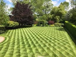 Mowing Patterns Classy The Pattern On This Lawn Makes It Look 48D Mildlyinteresting