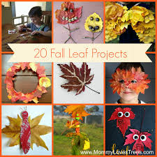 Nature Walk: 20 Art Projects Using Fall Leaves + Giveaway