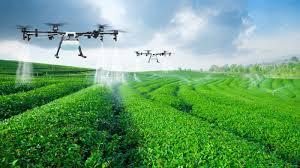 """Résultat de recherche d'images pour """"Le secteur agricole, grand absent des politiques de transition écologique"""""""