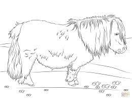 Risultati Immagini Per Immagini Cavalli Da Stampare Cavalli
