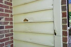 painting exterior trim. picking a new siding color \u0026 updating our exterior trim painting