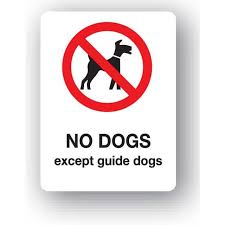 G13qp No Dogs Except Guide Dogs Sign