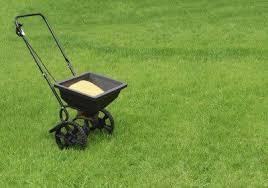 Types Of Lawn Fertilizer What Is The Best Lawn Fertilizer