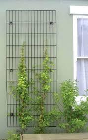 metal trellis panels for wall garden