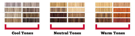 Neutral Hair Color Chart The Perfect Hair Color For Your Skin Tone The Beauty And