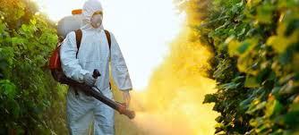 Αποτέλεσμα εικόνας για φυτοφάρμακα, ψεκάζοντας