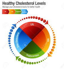 Cholesterol Chart An Image Of A Total Blood Cholesterol Hdl Ldl Triglycerides Chart