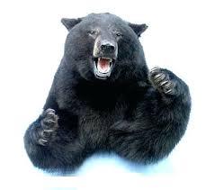black bear rug for craigslist bear rug for polar with head black bear rug black bear rug