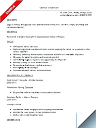 Resume Nursing Student