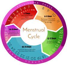 Fertility Days Calculator Black Prolife Coalition