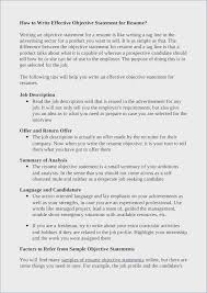 Resume Objective Statement Examples Mesmerizing Project Management Resume Objective Goal Statement Examples