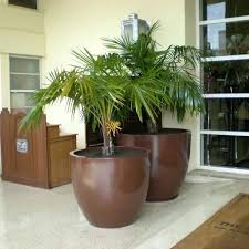 extra large plant pots large extra large outdoor plant pots uk