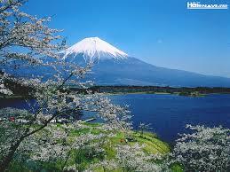 「富士山」の画像検索結果