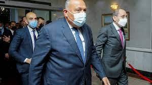 مصر: شكري يتوجه إلى أمريكا للتحضير لجلسة مجلس الأمن بشأن سد النهضة -  Sputnik Arabic