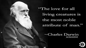 Charles Darwin The Lower Animals Like Man Feel Pleasure And Pain Best Darwin Quotes