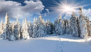 Image result for Winter snow path