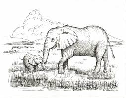 Baby Elephant Drawings Mother And Baby Elephant Drawing Print Products Baby Elephant