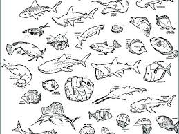 Ocean Animals Color Pages Coloring Pages Sea Animals Deep Sea Creatures Coloring Pages Ocean
