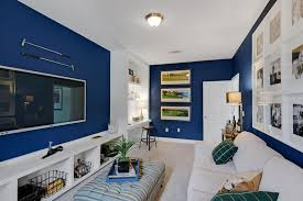 cozy living room with blue walls