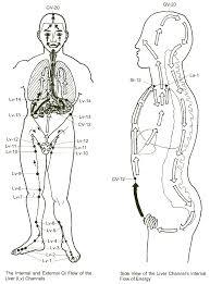 Chi Meridians Chart Liver Meridian