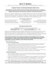 Resume Objective For Business Analyst Best of Resume Objective For Business Analyst Business Banker Resume