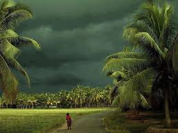 n kerala amazing places google search natural attraction   n kerala amazing places google search
