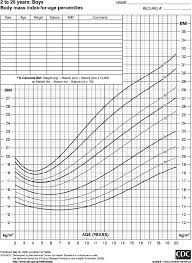 Bmi Centile Chart Bmi Percentiles For Age For Boys 2 To 20 Years Of Age