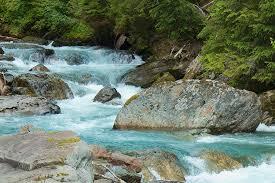 River Photograph - River Rocks by Sylvia Hart