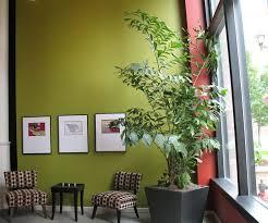 interior landscaping office. Interior Landscaping \u2013 Office