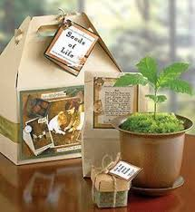 mark the birth of a child memorate a birthday or remember a loved one in a thoughtful and unique way with our handsome seeds of life gift