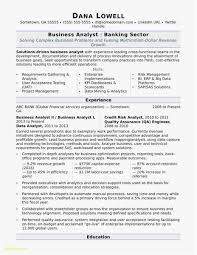 Business Analyst Manager Resume New Template 23 Business