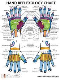 Hand Chart Hand Reflexes Chart