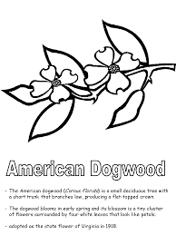 Small Picture Cardinal Bird And Flowering Virginia State Flower Coloring Page