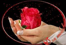 Роза в ладонях - гиф картинки