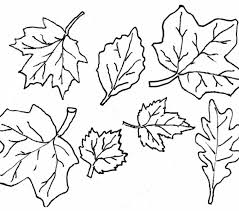 Small Picture Leaves Coloring Pages Printable Printable Coloring Pages With