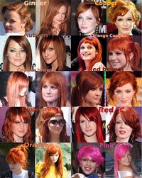 Light Red Hair Color Charts Red Brown Red Hair Color Chart