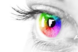 fancy word for green red yellow pink and green how the worlds languages name the rainbow