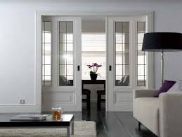 beautiful pocket doors with glass