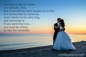 True Love Quotes For Him Awesome True Love Quotes Amazing True Love Is Like An Orchid 48 True Love