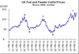 What To Expect Next From The Cattle Super Cycle Hi Pro Feeds