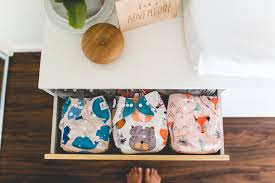 Diaper Price Comparison Chart Philippines 5 Best Cloth Diapers Of 2019