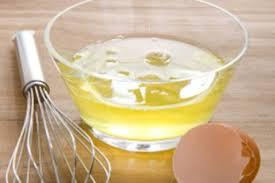 Hasil gambar untuk putih telur