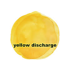Yellow Discharge | causes, types, anatomy, images