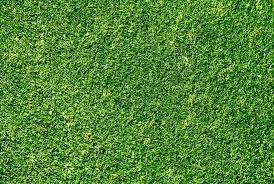 grass texture hd. Modren Texture Green Grass 01 Hd Picture For Grass Texture Hd U