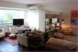 Studio Apartment Bedroom Interior Design Ideas With Wood Rack As Dividers