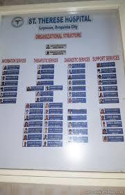 Organizational Chart Of A Drugstore Hospital Organizational Chart Sample Business 30434