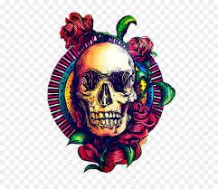 skull art calavera human skeleton cool skull