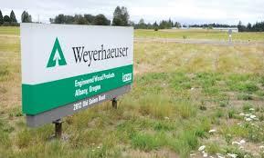 Resultado de imagen para Weyerhaeuser