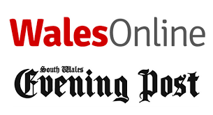 Image result for the evening post logo