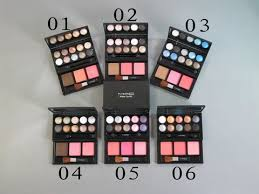 whole mac make up kit 10 color eyeshadow 2 blush aog970